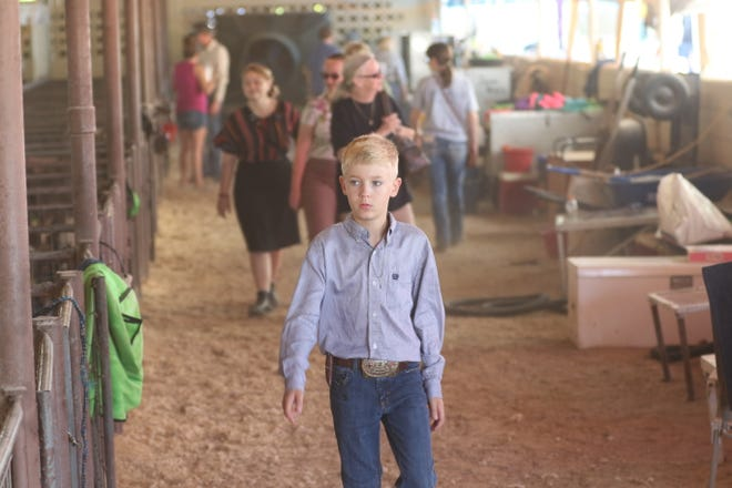 Local children compete in the booster lamb show, July 29, 2021 at the Eddy County Fair in Artesia.