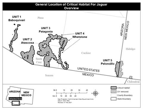 A map of critical habitat designated for jaguar recovery in Arizona. The New Mexico portion was excluded from the program.