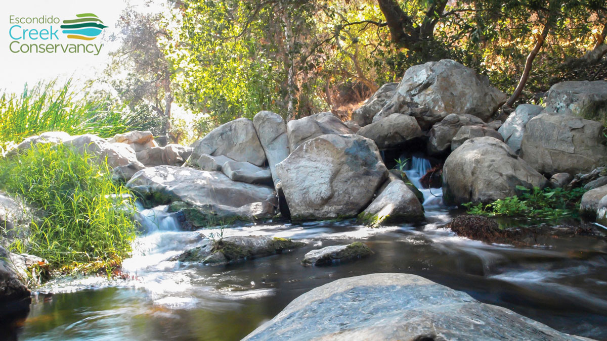 The Escondido Creek watershed extends from above Lake Wohlford, through the communities of Escondido, Harmony Grove, Elfin Forest and Rancho Santa Fe and into the San Elijo lagoon in Solana Beach and Encinitas. Photo courtesy of Escondido Creek Conservancy
